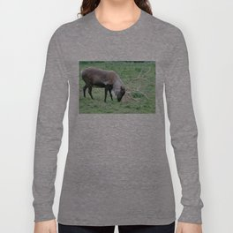 Caribou with Large Antlers Long Sleeve T-shirt
