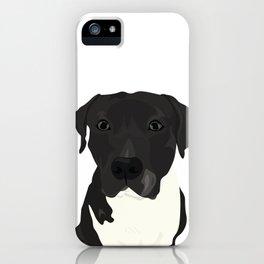 Atticus the Pit Bull iPhone Case
