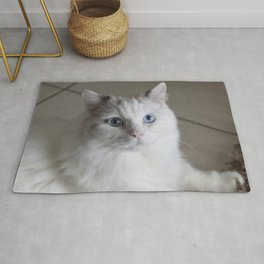 Ragdoll Cat Blue Eyes Rug