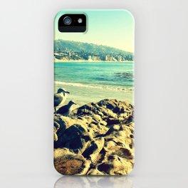Birds at the beach. iPhone Case