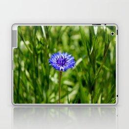 Blue Cornflower Laptop & iPad Skin