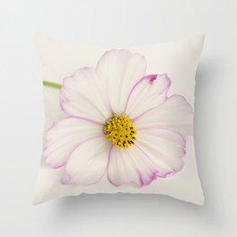 Sensation Cosmos Single Bloom Throw Pillow