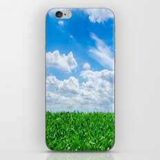 Green grass and blue sky iPhone & iPod Skin