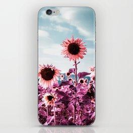 Pink Sunflowers iPhone Skin