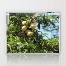 sweet fruits Laptop & iPad Skin