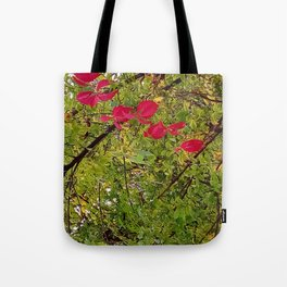 Touch of red Tote Bag