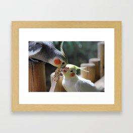 Seed Sharing Framed Art Print