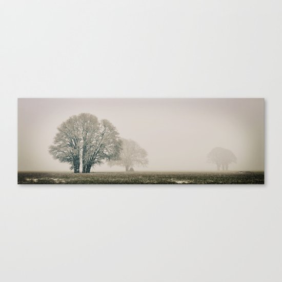 Enduring Winter Canvas Print