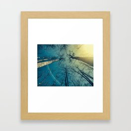 the trees know Framed Art Print