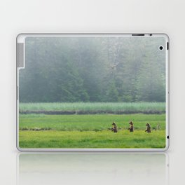Looking for Goldilocks Laptop & iPad Skin