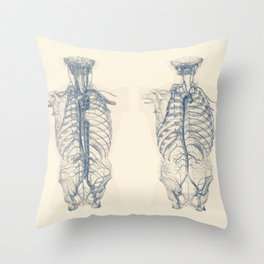 Venous and Circulatory System - Human Torso - Vintage Anatomy Throw Pillow