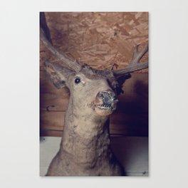 Uncle Buck Canvas Print