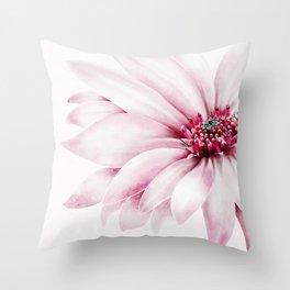 Pastel chrysanthemums Throw Pillow