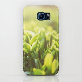Freshness in the morn iPhone Case