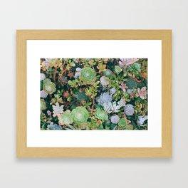suucu garden Framed Art Print