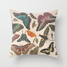 Vintage butterfly collage of antique drawings Throw Pillow