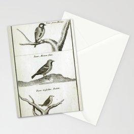 012 parus passer troglodites6 Stationery Cards