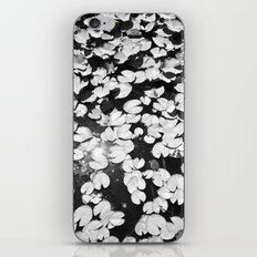 Water Lily iPhone & iPod Skin