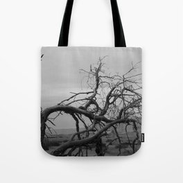 """I met a traveller from an antique land...""  Tote Bag"