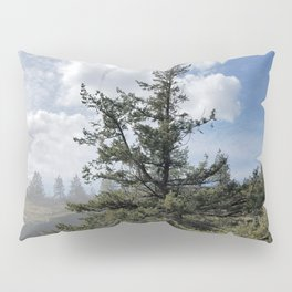 Gnarled Tree Against Blue Sky and Clouds, Beautiful Landscape of Old Tree Pillow Sham