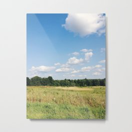 north country vibes Metal Print