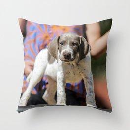 Ayra, the GSP Throw Pillow