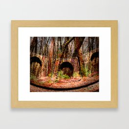 Rusty Woods Framed Art Print