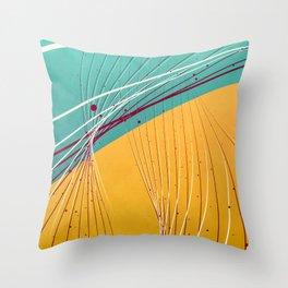 two tone bridging Throw Pillow