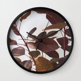 Cotinus Royal Purple Wall Clock