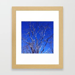 Dead Tree Defiance Framed Art Print