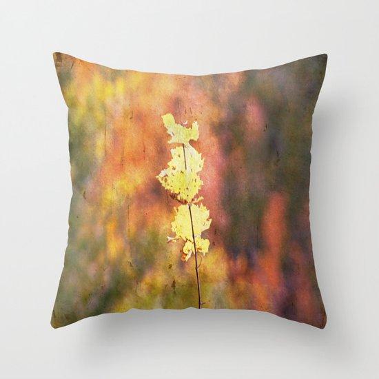 Seasonal Closeup - Autumn Throw Pillow