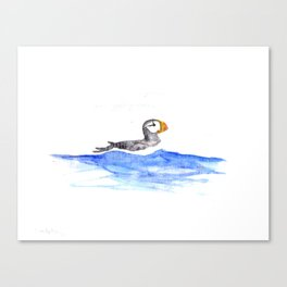 horned puffin Canvas Print