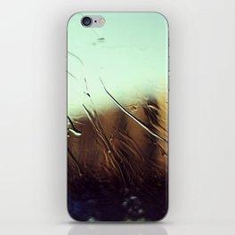 windshield life 2 iPhone Skin
