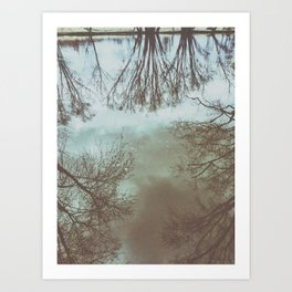 trees in the water Art Print