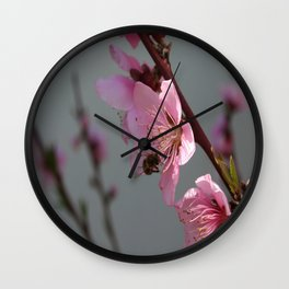 Honey Bee Feeding on Peach Tree Blossom Wall Clock