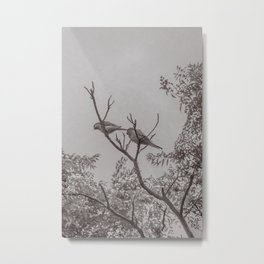 Couple of Parrots in the Top of a Tree Metal Print