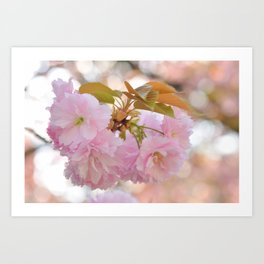 Dreaming of Spring Art Print