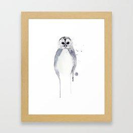 Owl - Winter White Framed Art Print