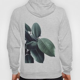 Ficus Elastica #18 #White #foliage #decor #art #society6 Hoody