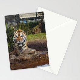 LSU's Mike VI Stationery Cards