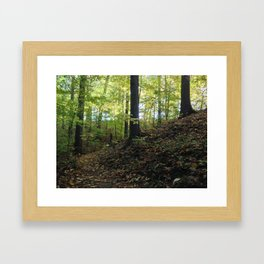 FALL TRAIL SUNRISE (Crescent Trail, Fairport, NY) Framed Art Print