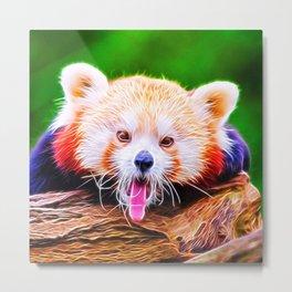 Animal ArtStudio 5916 Red Panda Metal Print