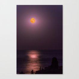 Full Moon High Canvas Print