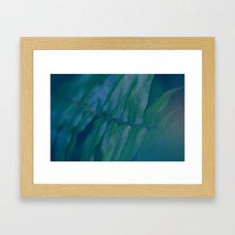 Midnight Green Framed Art Print