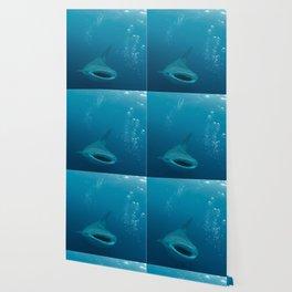 Open Wide (Whale Shark) Wallpaper