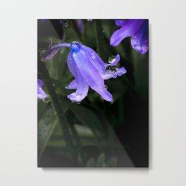 Bluebell Bling Metal Print