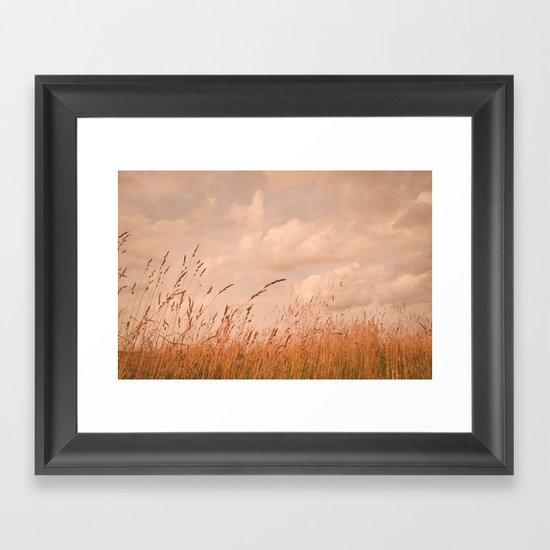 meadow I Framed Art Print
