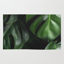 Tropical Monstera Leaves Wet Supple Foliage Dark Dense Forest Rug