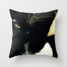 Buzzy Throw Pillow