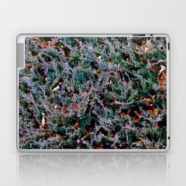 Lost in the Frenzy Laptop & iPad Skin